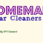Homemade Vinegar Toilet Cleaner