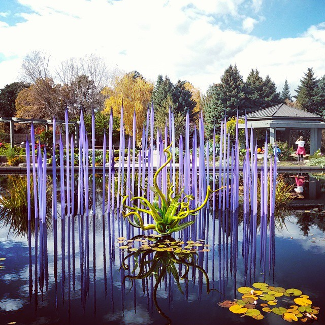 Beautiful #colorado skies are the perfect backdrop for this #chihuly piece. #denver #travel #art #gardens