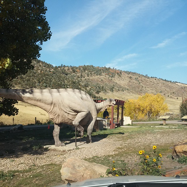 #Dinosaurs ruuunnnnn @dinosaurridge #denver #travel