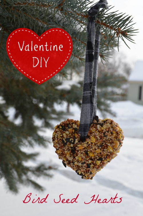 Adorable Valentine's Day craft for the birds!