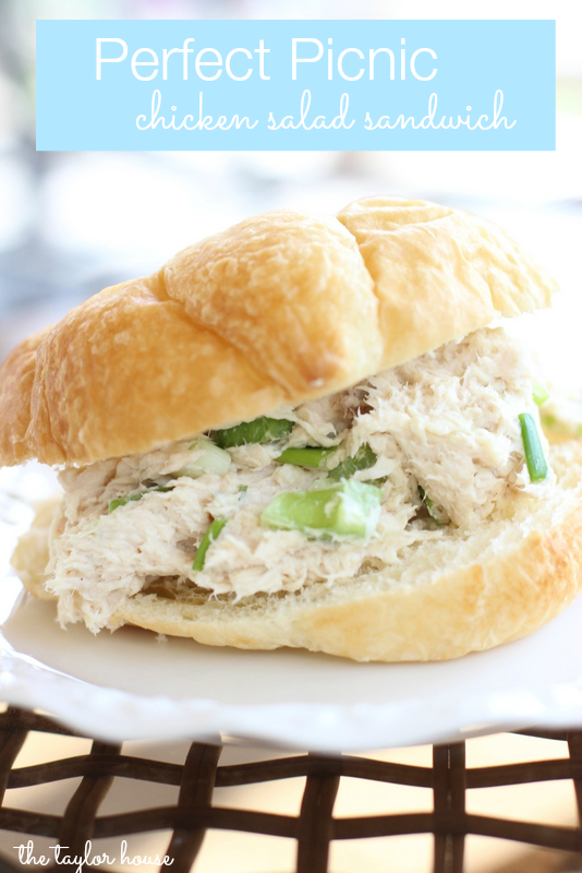 Looking for cold picnic food recipes? This Chicken Salad is perfect for a sunny day picnic