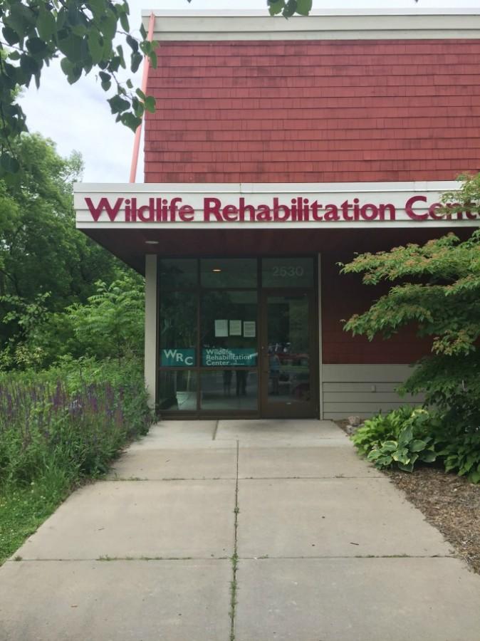 wildliferehab