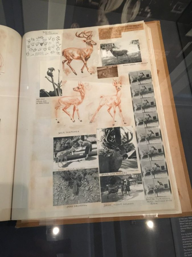Notes for Movement Studies for Bambi