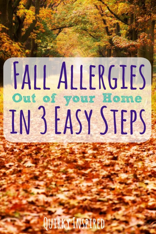 Have seasonal allergies? Check out these three easy tips to reduce fall allergies in your house this fall!
