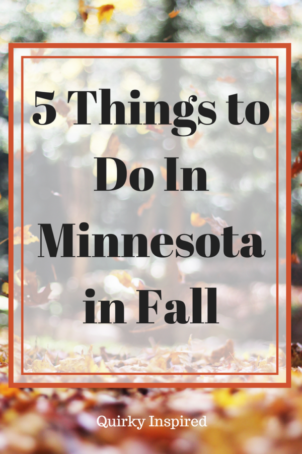 5 fun things to do in Minnesota in fall! Some of the best weather during the year! Click this pin to plan your next Minnesota day trip!