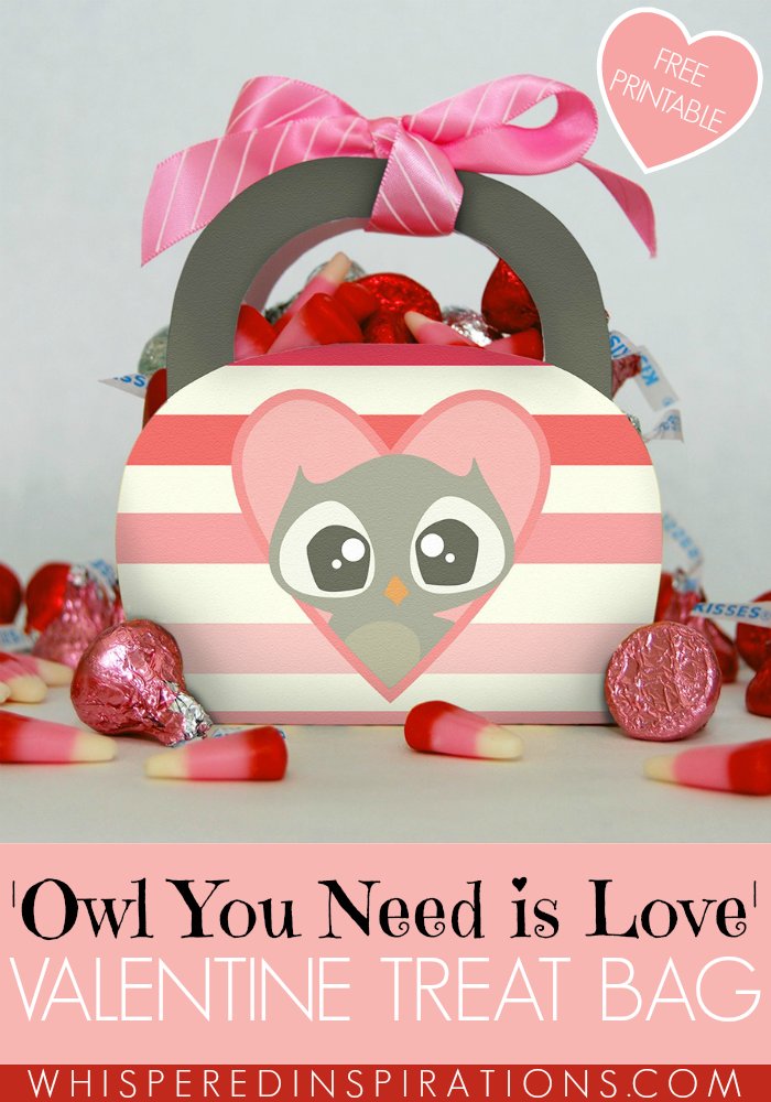 Owl you need is love with this Owl Valentine printable. Click for more!